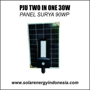 two in one 30w 90wp